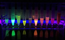 A rack of test tubes showing solutions glowing in different colors