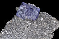 Fluorite, calcite, muscovite, pyrite, quartz 1.jpg