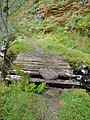 Footbridge on the track leading from Loch Hourn to Inverie - geograph.org.uk - 559608.jpg