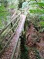 Footbridge over Bottom Dumble - geograph.org.uk - 1013812.jpg