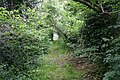 Footpath - Once the Road to Welland - geograph.org.uk - 445982.jpg