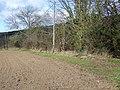 Footpath near Tincleton - geograph.org.uk - 1179332.jpg