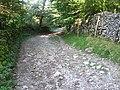 Footpath to Clapham - geograph.org.uk - 1490048.jpg