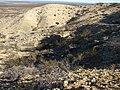Formación Roca en Barda Norte, localidad tipo de la Formación Roca.jpg