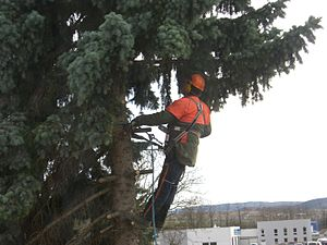 Safety culture - ... doing a job with inadequate safety equipment is a more certain indicator of a poor safety culture ..