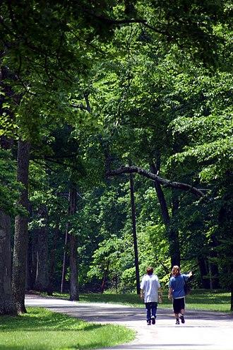 Washington Township, Warren County, Ohio - Trail at Fort Ancient