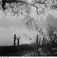 Fotothek df ps 0005501 Landschaften ^ Seenlandschaften - Teichlandschaften.jpg