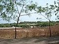 Foulbere, Garoua, Cameroon - panoramio (1).jpg