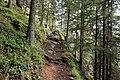 France - trail 3.jpg