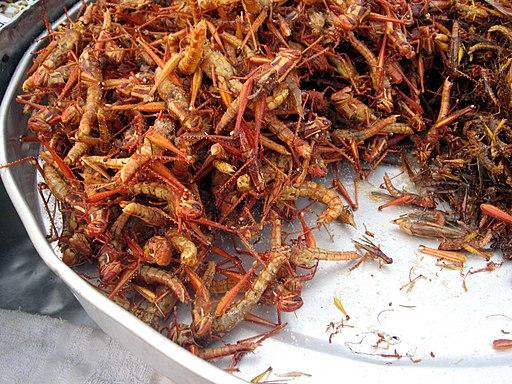Fried grasshoppers in Bangkok