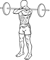 Squat (exercise) - Wikipedia
