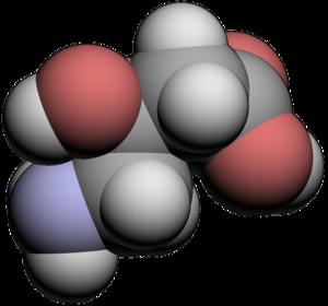 Gamma-Amino-beta-hydroxybutyric acid - Image: GABOB3d
