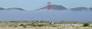 Fog envelops the Golden Gate Bridge and approaches Crissy Field.