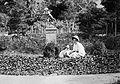 Garden, woman, dog, sculpture, summer, angel Fortepan 10501.jpg