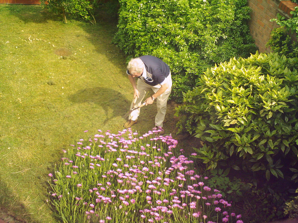 metier de jardinage