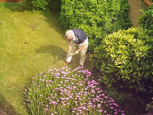 travaux au jardin