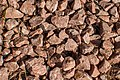 Gardening Stones Texture DTXR-ST-4.jpg