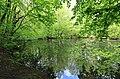 Geschützter Landschaftsbestandteil Schubertgrund in Sachsen. 2H1A0973WI.jpg