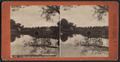 Geyser Lake Reflections, Saratoga, N.Y, from Robert N. Dennis collection of stereoscopic views.png