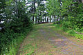 Gfp-minnesota-voyaguers-national-park-short-trail.jpg