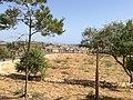 Ggantija, Gozo 87.jpg