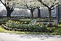 Glasnevin Cemetery - (442801950).jpg