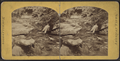 Glen Mary on the Catskill, from Robert N. Dennis collection of stereoscopic views.png