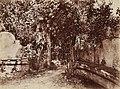 Gloeden, Wilhelm von (1856-1931) - n. 2627 recto.jpg