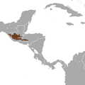 Goodwin's Broad-clawed Shrew area.png