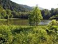 Gosh Lake Emma YSU (1).jpg