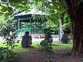 Grădina Publică municipiul Târgu Jiu img-0010.jpg
