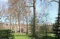 Grays Inn gardens 2020.jpg