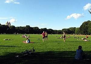 Great Lawn and Turtle Pond - Recreational usage of the Great Lawn