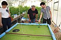 Green Age Aquaponics - Armenia 04.jpg