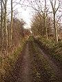 Green Road - geograph.org.uk - 1119571.jpg