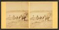 Group of people on the beach, from Robert N. Dennis collection of stereoscopic views 2.png