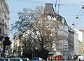 GuentherZ Naturdenkmal 764 2010-03-20 0052 Wien08 Alserstrasse47 Platane.jpg