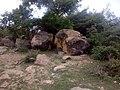 HILLS AT TIGA PARK KANO STATE (3).jpg