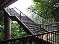 HK Mid-levels 摩星嶺 Mount Davis 薄扶林道 Pok Fu Lam Road bridge stairs September 2019 SSG 11.jpg