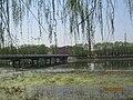 Haidian, Beijing, China - panoramio (1).jpg