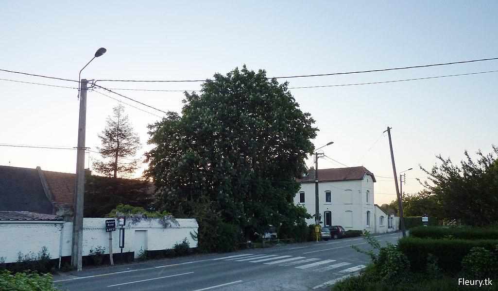 Photographie du Hameau de Fleury. Au centre, on voit le majestueux marronnier qui produit des milliers de fruits chaque année.