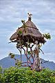 Hamer Tribe, Ethiopia (14979375967).jpg