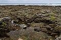 Harutahama Beach (4485972412).jpg