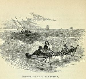 George Crawford Hyndman - Dredging for marine animals in 1849