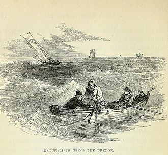 "Marine biology dredge - ""Naturalists using the dredge"", a plate from William Henry Harvey's The Seaside Book"