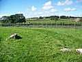 Henge at Bryn Celli Ddu - geograph.org.uk - 564723.jpg