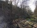 Hengelose-berg2.jpg