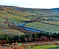 High Gill, Rosedale - geograph.org.uk - 897093.jpg