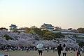Himeji castle April 38.jpg