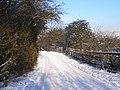 Hinds Lane - geograph.org.uk - 1671170.jpg
